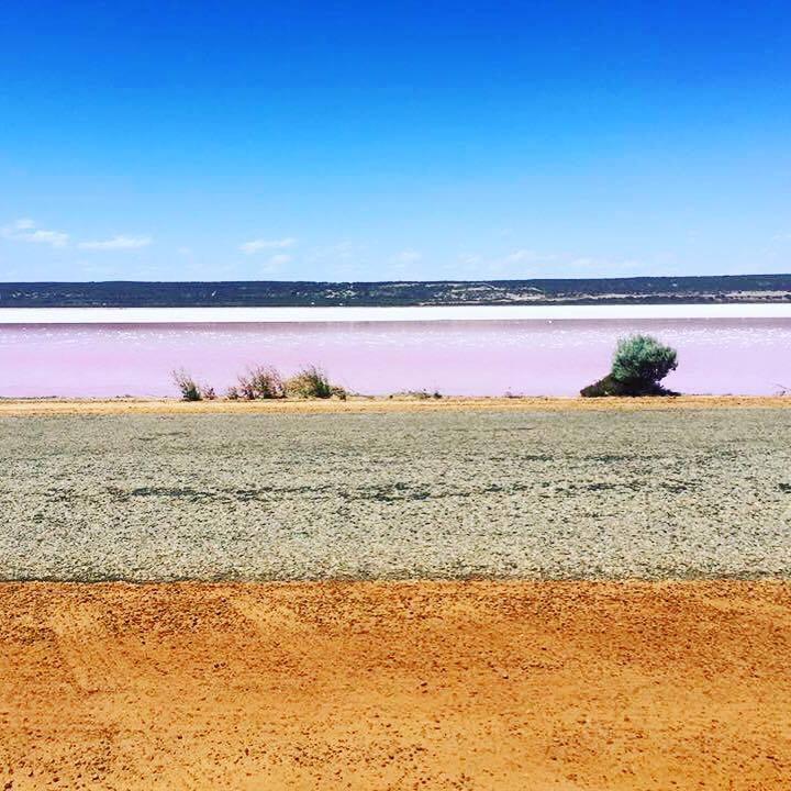 ppink lake 2.jpg